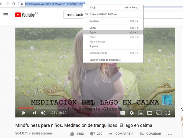 Captura de una imagen con la pantalla de youtube