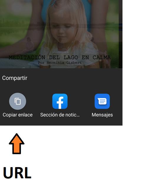 captura de pantalla de Guía para descargar vídeos desde el celular